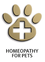 Homeopathy Course for Pets