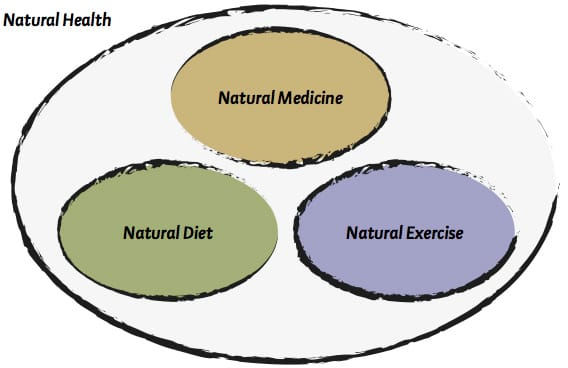 Principles Of Good Health Definition And Meaning