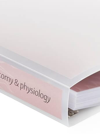 A&P course folder Spine