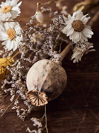 Naturopathy dried flowers