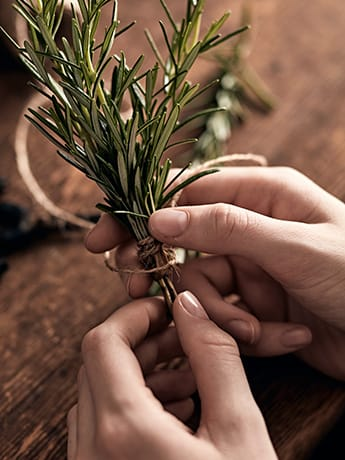 Tying Rosemary with string 3 LR